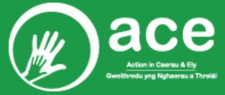 Action in Caerau & Ely Logo
