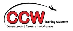 Career Change Wales Logo